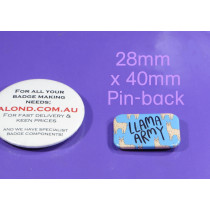 compact pin-back name badge, small, neat and compact!